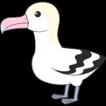 アホウドリ(鳥)【無料イラスト・フリー素材】