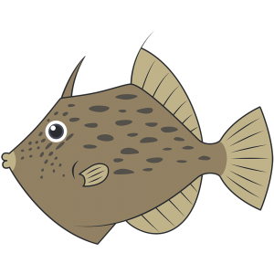 カワハギ(魚)【無料イラスト・フリー素材】