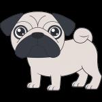 パグ(犬)【無料イラスト・フリー素材】