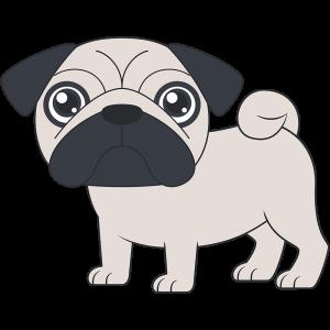 パグ(犬)