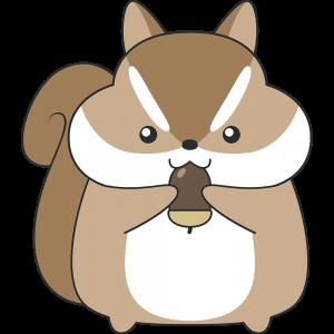 ドングリを食べるシマリス