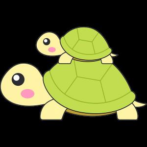 親子リクガメ(亀)