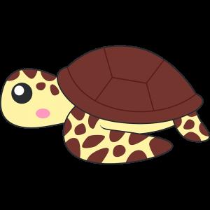 ウミガメ亀のイラスト無料フリー
