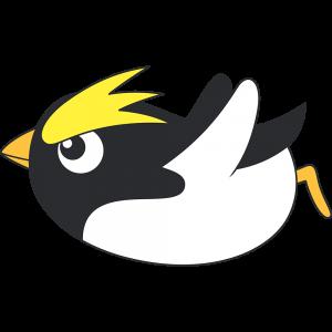 滑るイワトビペンギン(鳥)