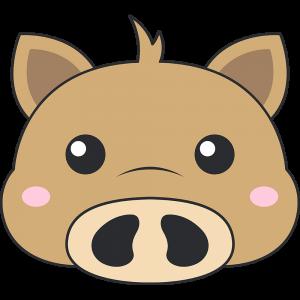 ウリ坊(猪)の顔