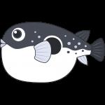 トラフグ(魚)のイラスト【無料・フリー】