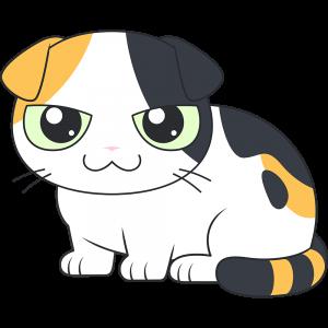 スコティッシュフォールド(三毛猫)のイラスト【無料・フリー】