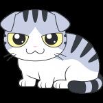 スコティッシュフォールド(サバ白猫)のイラスト【無料・フリー】