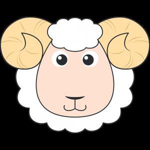 ヒツジ(羊)の顔