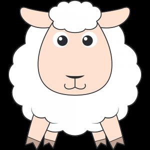コリデール(羊)
