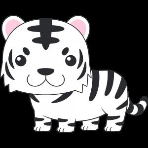 ホワイトタイガー(虎)