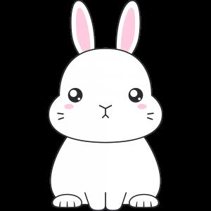 白いネザーランドドワーフ(ウサギ)