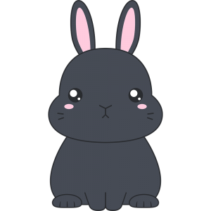 黒いネザーランドドワーフ(ウサギ)