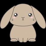 茶色いホーランドロップ(ウサギ)のイラスト【無料・フリー】
