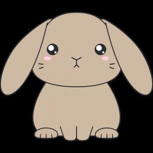茶色いホーランドロップウサギのイラスト無料フリー
