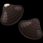 シジミ(貝)のイラスト【無料・フリー】