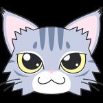 メインクーン(猫)の顔イラスト【無料・フリー】