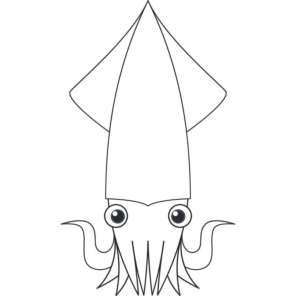 ヤリイカ(魚)のイラスト【無料・フリー】