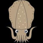 メスのアオリイカ(魚)のイラスト【無料・フリー】