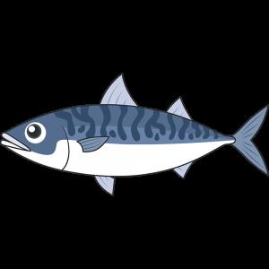 サバ(魚)のイラスト【無料・フリー】