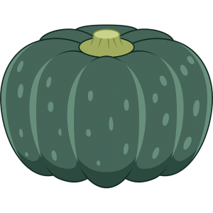 カボチャ(野菜)