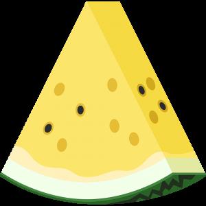 カットした黄色いスイカ(果物)