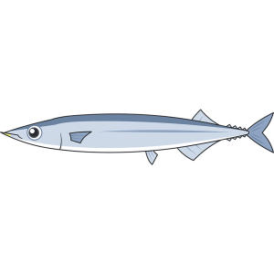 サンマ(魚)