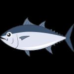 クロマグロ(魚)のイラスト【無料・フリー】