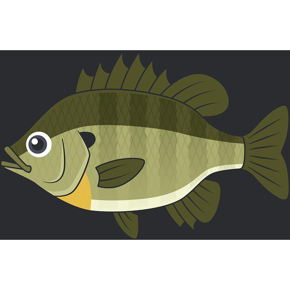ブルーギル(魚)のイラスト【無料・フリー】