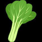 小松菜のイラスト【無料・フリー】