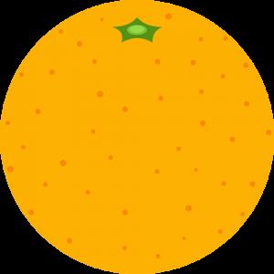 オレンジのイラスト【無料・フリー】