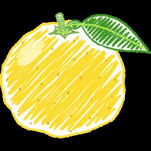 柚子の手書きイラスト
