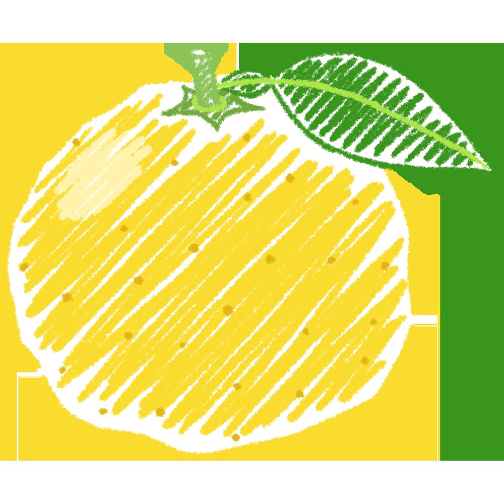 柚子の手書きイラスト【無料・フリー】