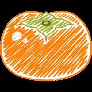 柿の手書きイラスト【無料・フリー】