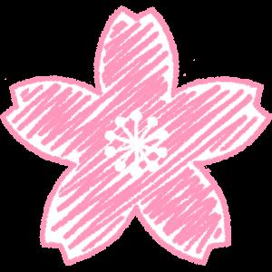 桜の花の手書きイラスト