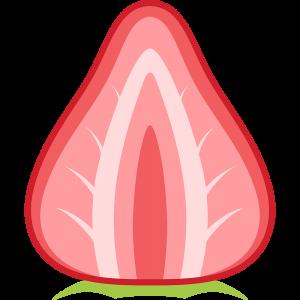 イチゴの断面(果物)のイラスト【無料・フリー】