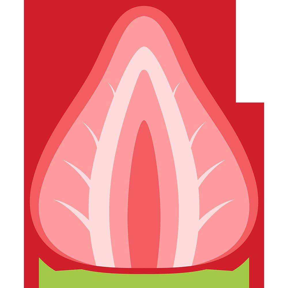 イチゴの断面のイラスト【無料・フリー】