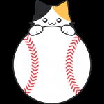 三毛猫と野球ボールのイラスト【無料・フリー】