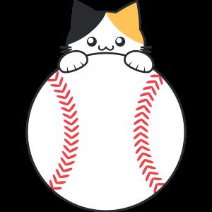 三毛猫と野球ボール