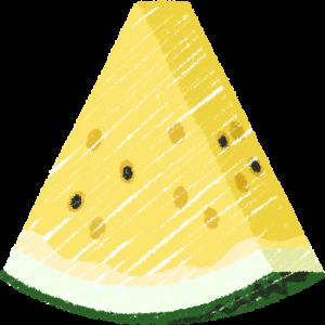 カットした黄色いスイカ(果物)の手書きイラスト