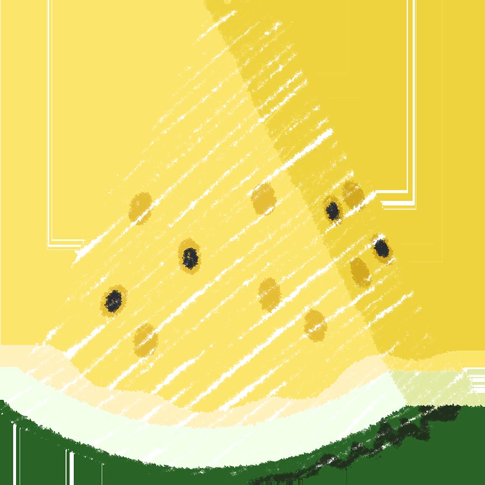 カットした黄色いスイカ(果物)の手書きイラスト【無料・フリー】