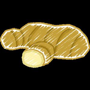 生姜の手書きイラスト