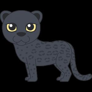 クロヒョウ(黒豹)