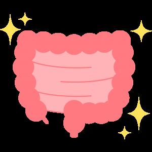 キレイな腸