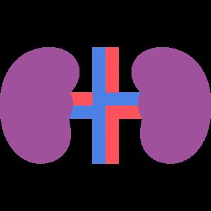 不健康な腎臓のイラスト【無料・フリー】