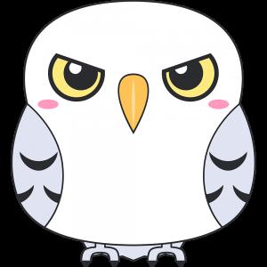 シロフクロウ(鳥)