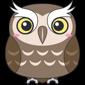 スピックスコノハズク(鳥)