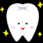 健康な歯の無料イラスト