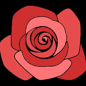 バラの無料イラスト