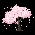 桜の木の無料イラスト